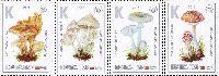 """Флора, Ядовитые грибы, 4м; """"К"""" х 4"""