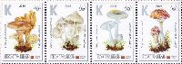 """Флора, Ядовитые грибы, 4м в сцепке; """"К"""" х 4"""