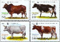 Фауна, Коровы, 4м; 2.40 Гр х 4