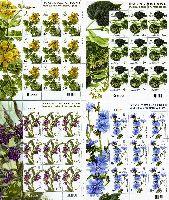 Флора, Лекарственные растения, 4 М/Л из 9 серий