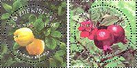 Фрукты, 2м; 1500, 1800 Сум